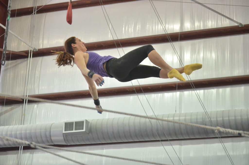 trapeze; flying trapeze; circus